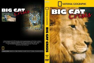 NG-BIG CAT CRISIS.pdf