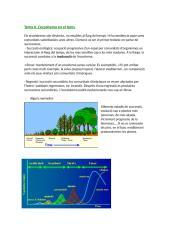 E.V. Tema 6.doc